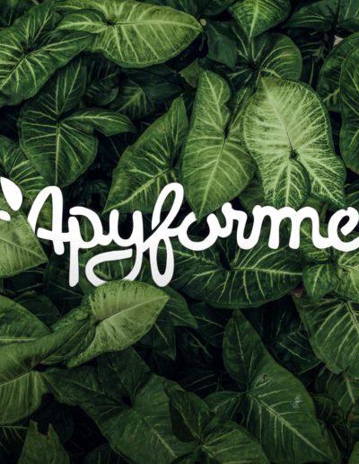 la-belle-recolte-communication-annecy-client-apyforme-sauvage